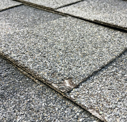 A Shingle Damaged by Hail
